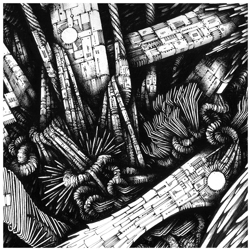 black and white dip pen drawing detail by francesco beretta